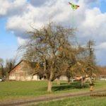 Drachen steigen lassen – Let a Kite fly
