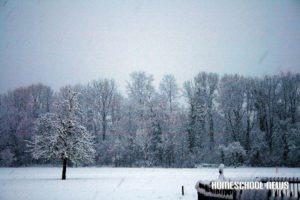 Schnee-16