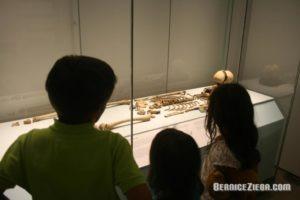 Museum-8
