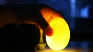 Ei- und Essig-Experiment, Egg Vinegar Experiment