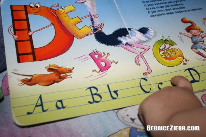Books, Bücher, Bernice Zieba